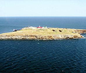 Змеиный остров. Фото: ИТАР-ТАСС