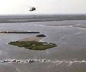 Мексиканский залив: из нефтяной трубы тоннами...