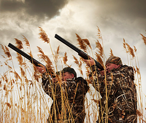 Охотников обяжут сдавать экзамен