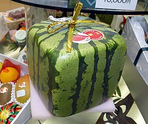 Квадратные арбузы из Японии появились в Москве.