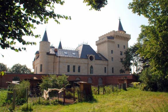 Пугачева иГалкин могут остаться без своего дома: замок рушится