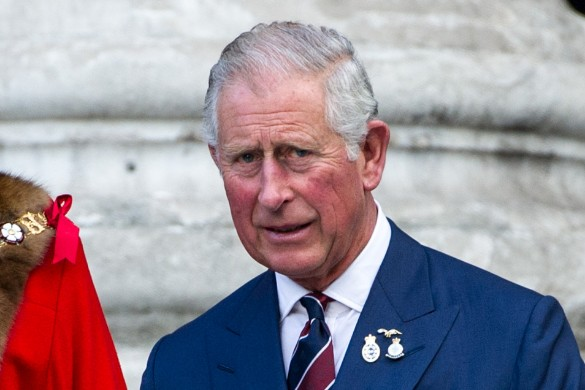 Чарльз, принц Уэльсский. Фото: GLOBAL LOOK press