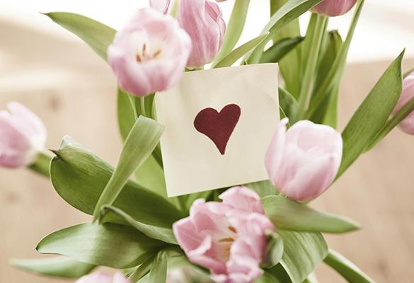 как правильно высадить цветы на клумбе фото
