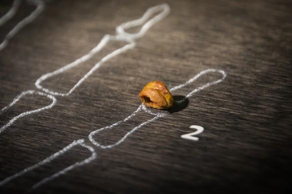 Фаланга пальца денисовского человека, найденная в 2008 году российскими археологами в Денисовой пещере на Алтае. Фото: ru.wikipedia.org / Thilo Parg