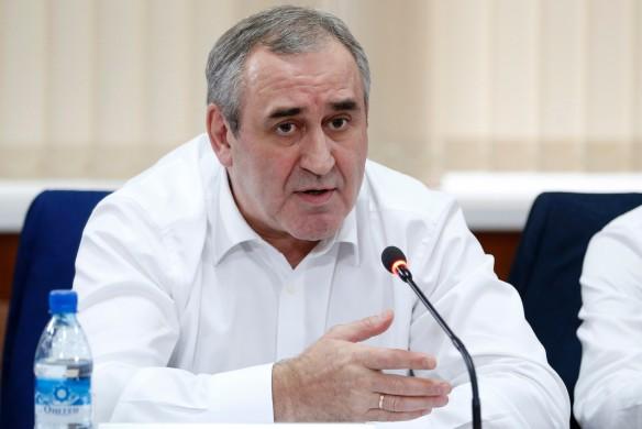 Сергей Неверов. Фото: Дмитрий Астахов/ТАСС