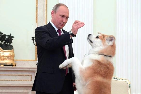 Владимир Путин и Юмэ. Фото: kremlin.ru