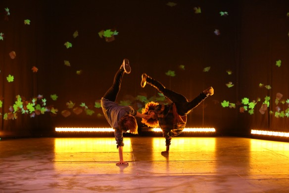"Танцевального шоу ""Жар-птица в стиле хип-хоп"". Фото: mmdm.ru"