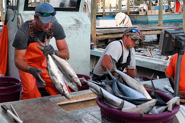 Санкции стали шоком для шотландских рыбаков