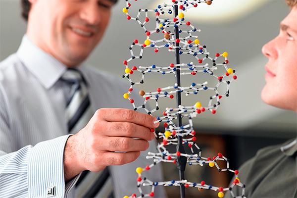 Ученые: У человека 193 тысячи родственников