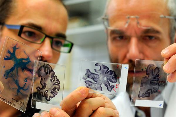Инфекционные болезни мочеполовой системы у мужчин