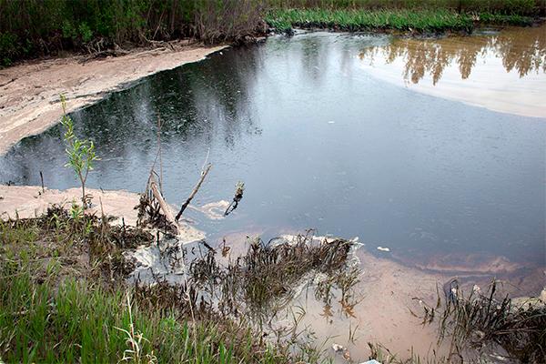 На нефть натравят древние бактерии