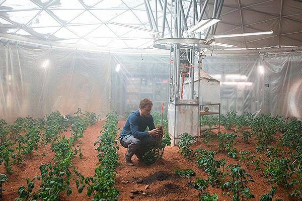 NASA будет выращивать картошку на Марсе