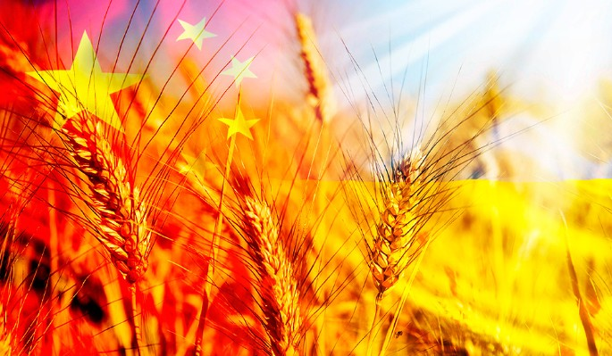 Китай нанес удар по украинской экономике