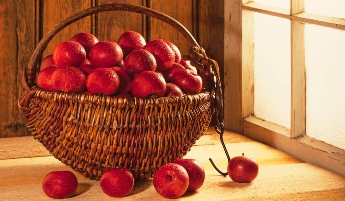 Польше привиделась яблочная тоска в России