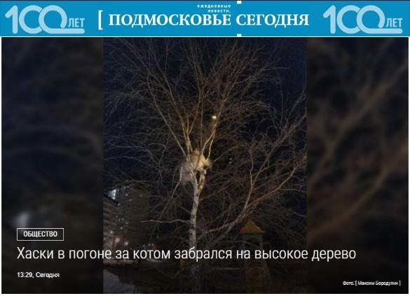 Фото: mosregtoday.ru