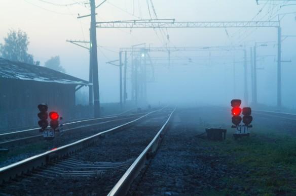 Фото: GLOBAL LOOK press/Konstantin Kokoshkin