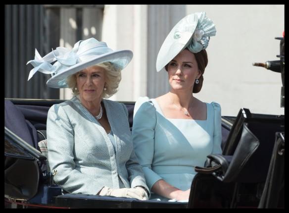 Камилла и Кейт Миддлтон. Фото: GLOBAL LOOK press/Stephen Lock