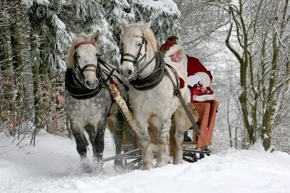 Согласно опросам, взрослые тоже заказывают Деду Морозу подарки. Фото: pixabay.com