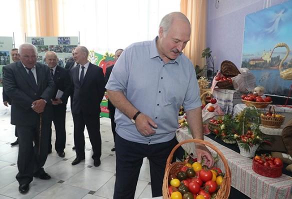 Александр Лукашенко в Ивье. Фото: president.gov.by