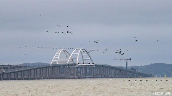 Крымский мост упростил жизнь на полуострове. Фото: most.life/multimedia