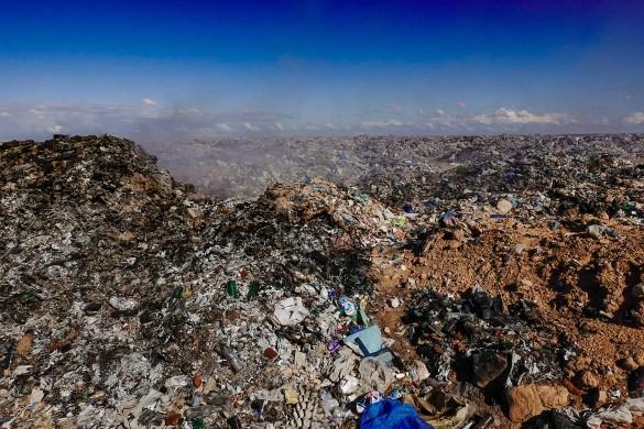 Фото: Alexander Farnsworth/picture alliance/www.globallookpress.com
