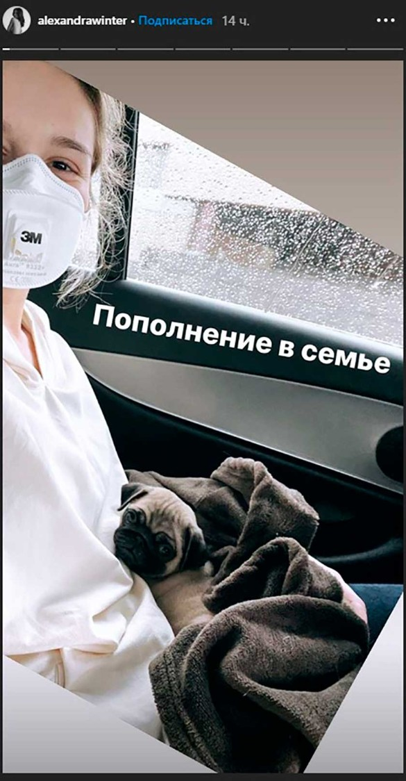 Фото: instagram.com/stories/alexandrawinter