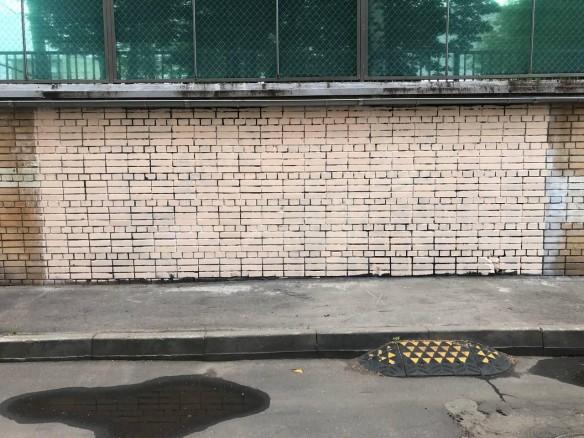 В центре Москвы закрасили граффити с оппозиционерами