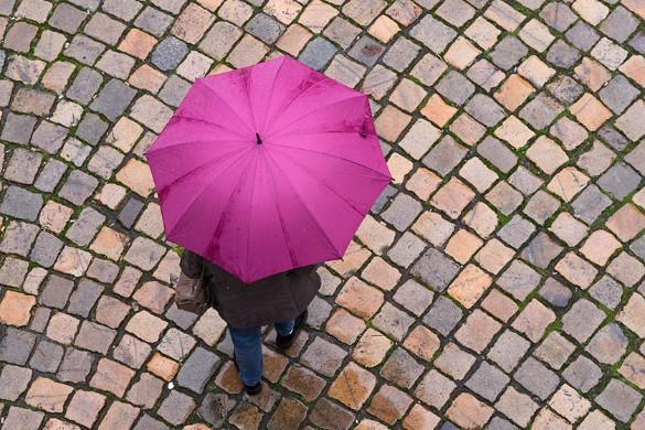 Фото: Sebastian Kahnert / dpa / www.globallookpress.com