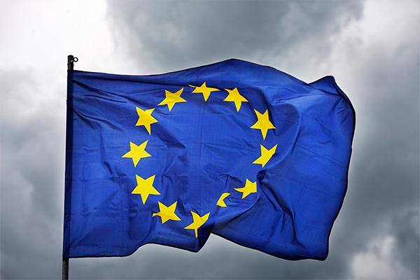 Ирландца оскорбил флаг Евросоюза