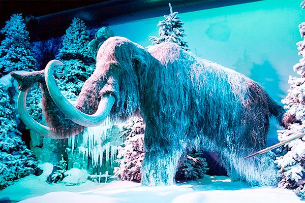 Туристов в Арктику привлекут мамонтами