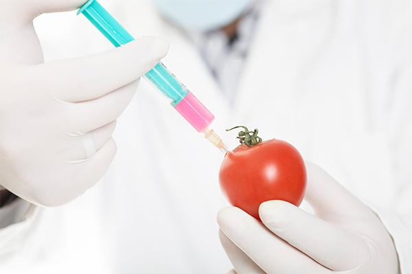 Россиян избавили от импортных ГМО