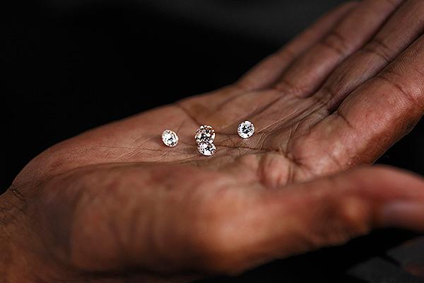 Алмазы нашли благодаря растениям