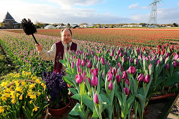 Голландские цветочники напряглись