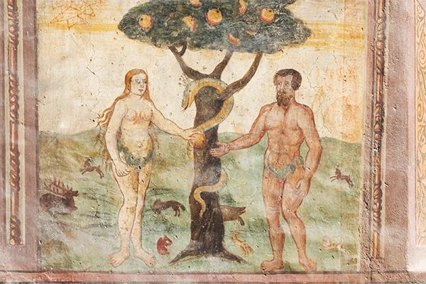 Бог создал Еву из полового органа