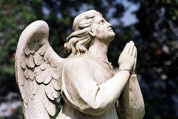На кладбищах будет Wi-Fi даром