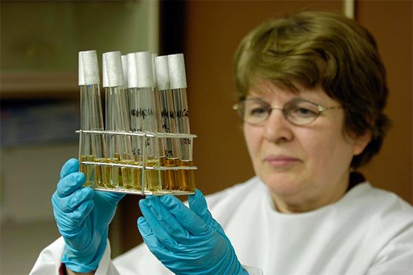 В РФ создали 1-ый результативный препарат отрака