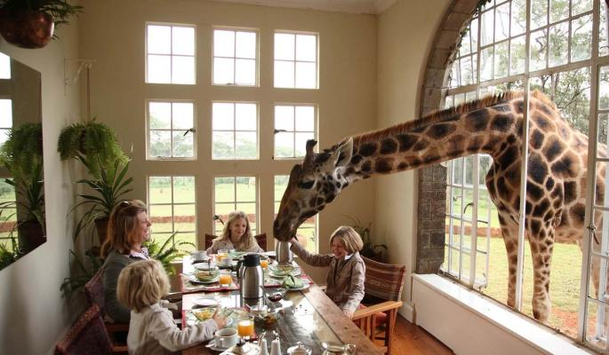 Самые необычные развлечения для гостей в отелях класса люкс