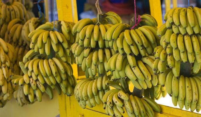 В Испанию вместо бананов отправили 900 кг кокаина