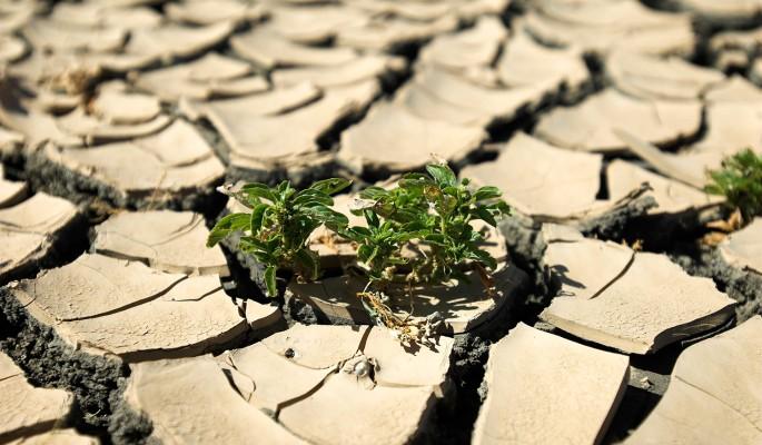 Земля неумолимо приближается к катастрофе из-за климата