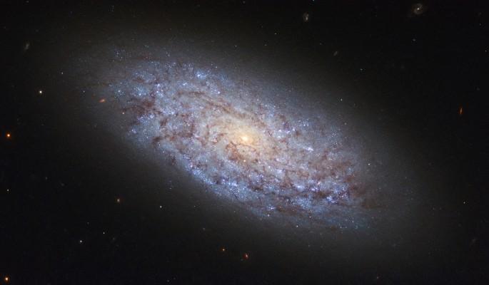 До Земли долетели сигналы из другой Галактики