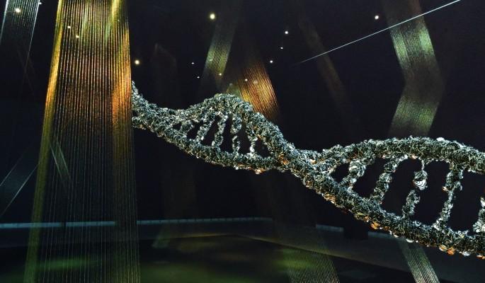 Защиту от рака нашли в генах