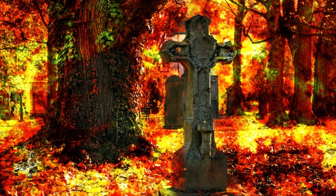 Взрыв на кладбище в Москве: много погибших