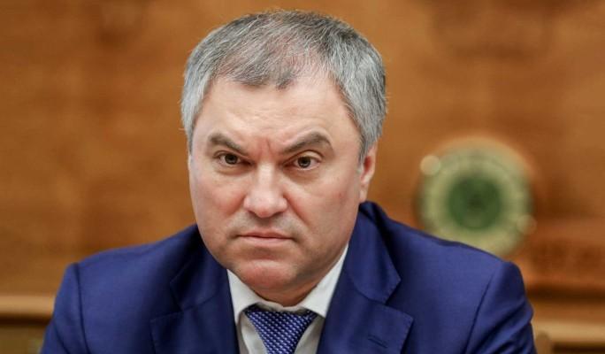 Володин назвал цель втягивающих Грузию в скандалы радикалов