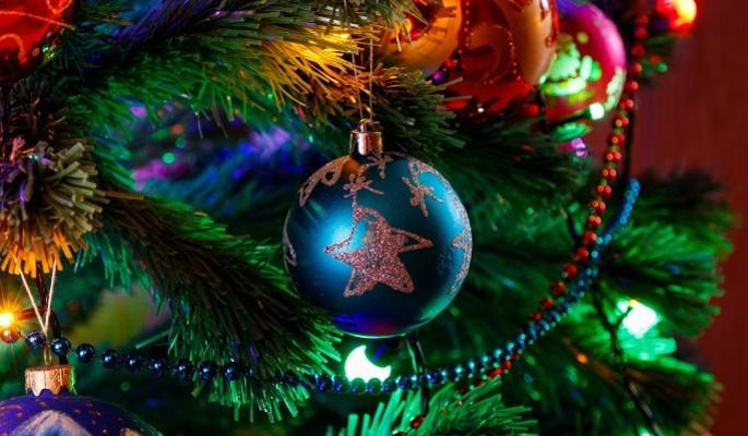 Рождественская елка от Федерации бокса России (ФБР) собрала уже более 100 тыс. человек