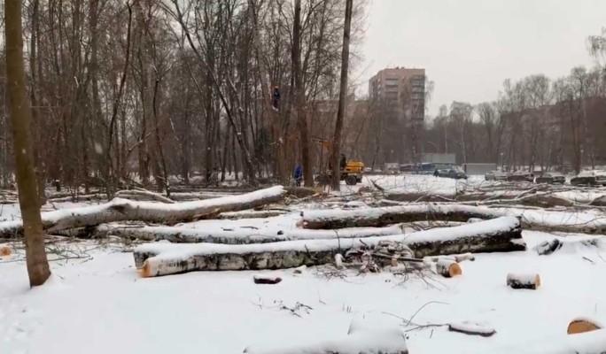 "Москвичи встали на защиту парка ""Березовая аллея"""