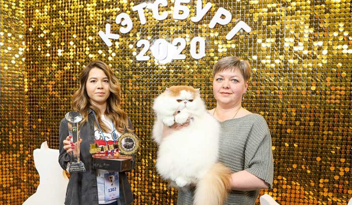 """Участники выставки кошек """"Кэтсбург"""" установили новый рекорд России"""