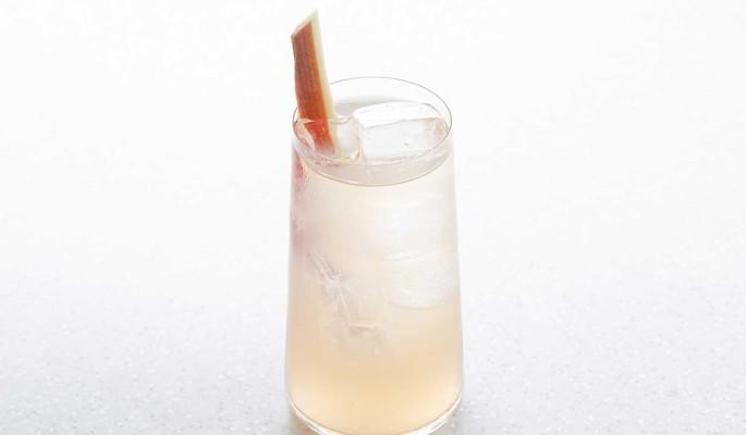 Рецепт лимонада с джином