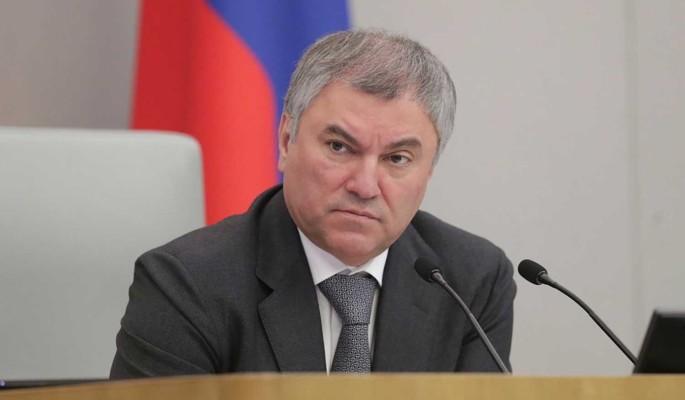 Володин отметил эффективную работу президента в условиях пандемии