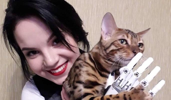 Покалеченная мужем-тираном беременная Грачева сделала заявление: Уже не отец